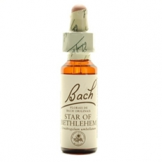Star of Bathlehem Gotas 20 ml
